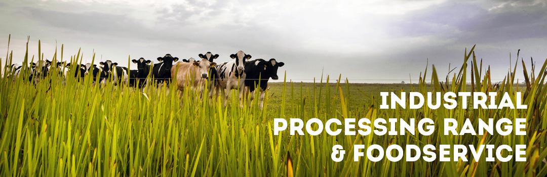 Industrial processing range